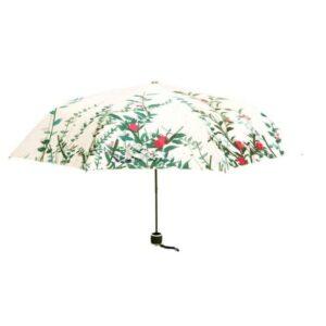 Fashion Parasol Beautiful Rain Umbrella For Women