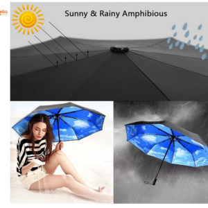 Compact Travel Folding Umbrella for Women and Men