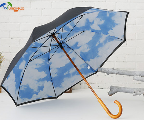 Blue-Sky-Umbrella